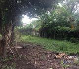 Vendo terreno en Lotificacion El Eden Colon La Libertad | PVT0060518