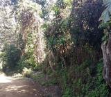 Vendo O Cambio Terreno en Jayaque