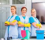 Agencia Ofrece Servicios de Domestica