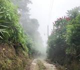 TERRENO EN VENTA EN VOLCÁN DE SAN SALVADOR CERCA DE RESTAURANTE LA PAMPA