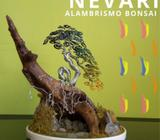 Nevari Alambrismo Bonsai #3